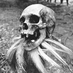 Decorated ancestor skull