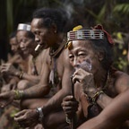 Bajak Tolkot Smoking